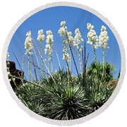 Mission Yuccas Round Beach Towel