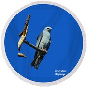Mississippi Kite Round Beach Towel