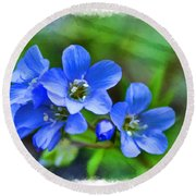 Missouri Wildflowers 5  - Polemonium Reptans -  Digital Paint 1 Round Beach Towel