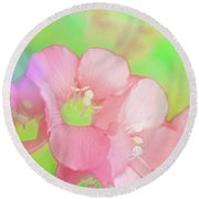 Missouri Wildflowers 5  - Polemonium Reptans -  Digital Paint 7 Round Beach Towel