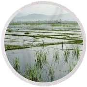 Misty Morning In China Round Beach Towel