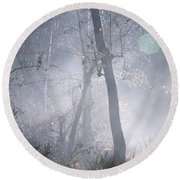 Misty Morning - Ojai California Round Beach Towel