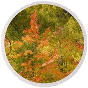 Mixed Autumn Round Beach Towel