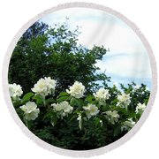 Mock Orange Blossoms Round Beach Towel
