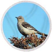 Mockingbird . 7682 Round Beach Towel