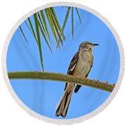 Mockingbird In A Palm Tree Round Beach Towel