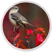 Mockingbird On Red Round Beach Towel