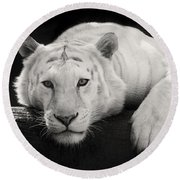 Mohan The White Tiger Round Beach Towel