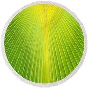 Molokai Palm Fan Round Beach Towel