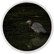 Moment Of The Heron Round Beach Towel