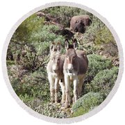 Mommy And Baby Burro Round Beach Towel