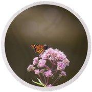 Monarch Butterfly 3 Round Beach Towel