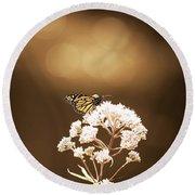 Monarch Butterfly 4 Round Beach Towel