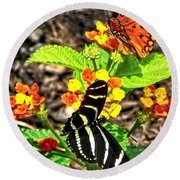 Monarch Butterfly And Zebra Butterfly Round Beach Towel