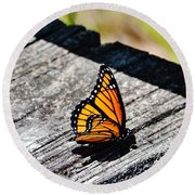 Monarch Butterfly I Round Beach Towel
