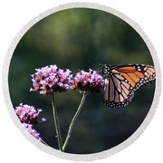 Monarch Butterfly IIi Round Beach Towel