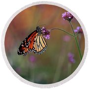 Monarch Butterfly In Autumn 2011 Round Beach Towel