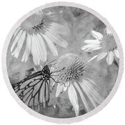 Monarch Butterfly In Black And White Round Beach Towel