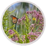 Monarch Butterfly In Joe Pye Weed Round Beach Towel