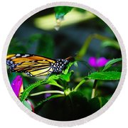Monarch Buttefly Round Beach Towel