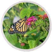 Monarch Butterfly On A Flower  Round Beach Towel