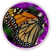 Monarch Dreams Round Beach Towel