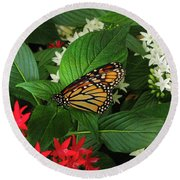 Monarch Framed Round Beach Towel
