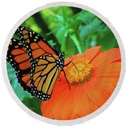 Monarch On Mexican Sunflower Round Beach Towel