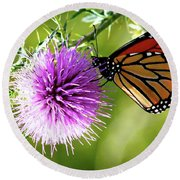 Monarch Thistle Round Beach Towel