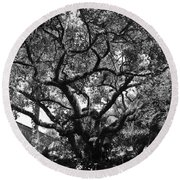 Monastery Tree Round Beach Towel