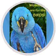 Monday For The Birds Round Beach Towel