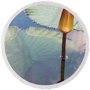 Monet Water Lily Stem Red Orange Round Beach Towel