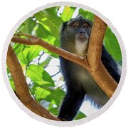 Monkey Round Beach Towel