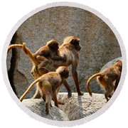 Monkey Family Round Beach Towel