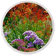 Yellow-orange Kangaroo Paws And Sea Lavender By Napier At Pilgrim Place In Claremont-california Round Beach Towel