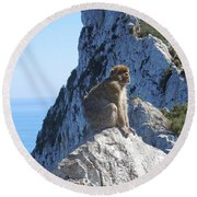 Monkey In Gibraltar Round Beach Towel