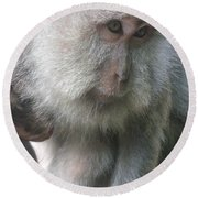 Monkey Mother 3 Round Beach Towel