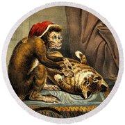 Monkey Physician Examining Cat For Fleas Round Beach Towel