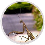 Monster Mantis Round Beach Towel