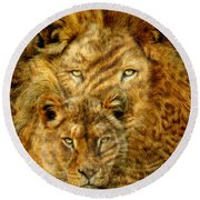 Moods Of Africa - Lions 2 Round Beach Towel
