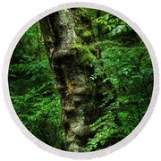 Moody Tree In Forest Round Beach Towel