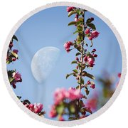 Moon Through The Crabapple Blossoms Round Beach Towel