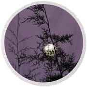 Moon Trees Round Beach Towel