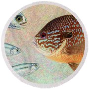 Mooneyes, Sunfish Round Beach Towel
