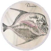 Moonfish, 1585 Round Beach Towel