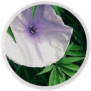 Moonflower Round Beach Towel