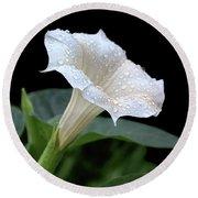 Moonflower - Rain Drops Round Beach Towel