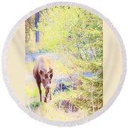 Moose In The Yard Round Beach Towel