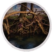 More Roots In Creek Round Beach Towel