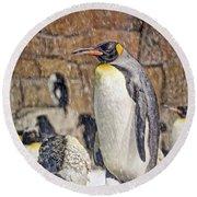 More Snow - King Penguin Round Beach Towel